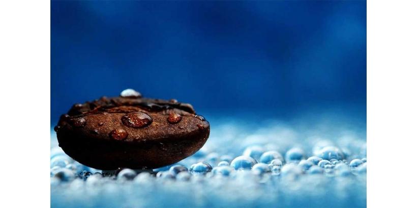 Подробно о воде — химия водно-солевых процессов